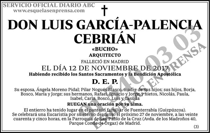 Luis García-Palencia Cebrián